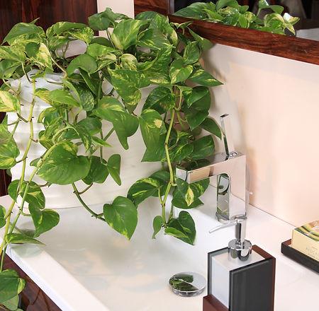 Indoor bathroom Ballarat