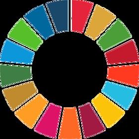 SDG-Color-Wheel_edited.png