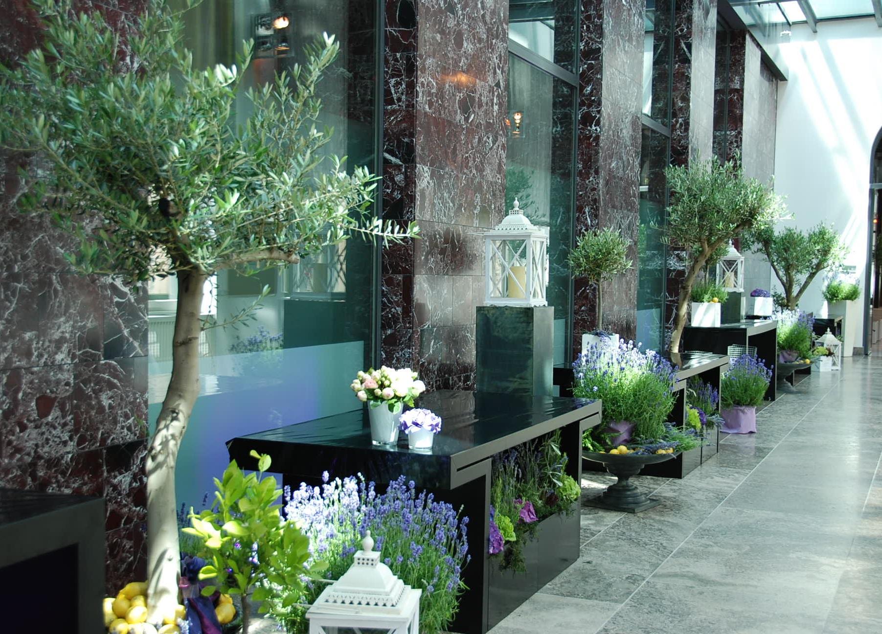 Lavendel 2012 016