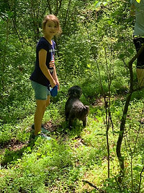 dog hiking 2.jpg