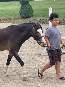 Leading Horse.jpg