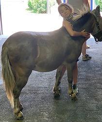 Girl&Donkey.jpg