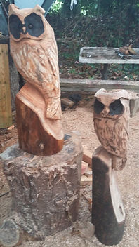 Wooden carved owls, garden ornaments, garden sculpture