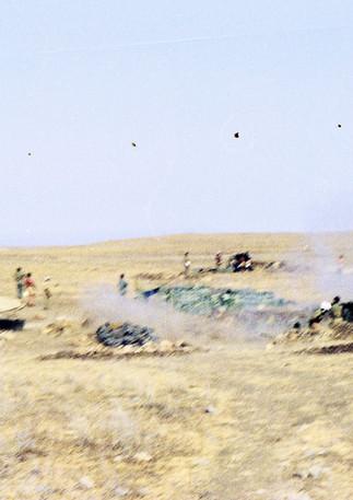 119_2 75mm mountain guns at White City.j