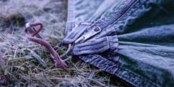 Tent_Frozen_Detail