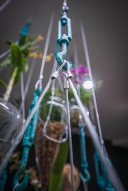Hanging Garden 5