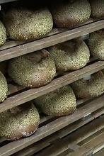Brotfabrik.jpg