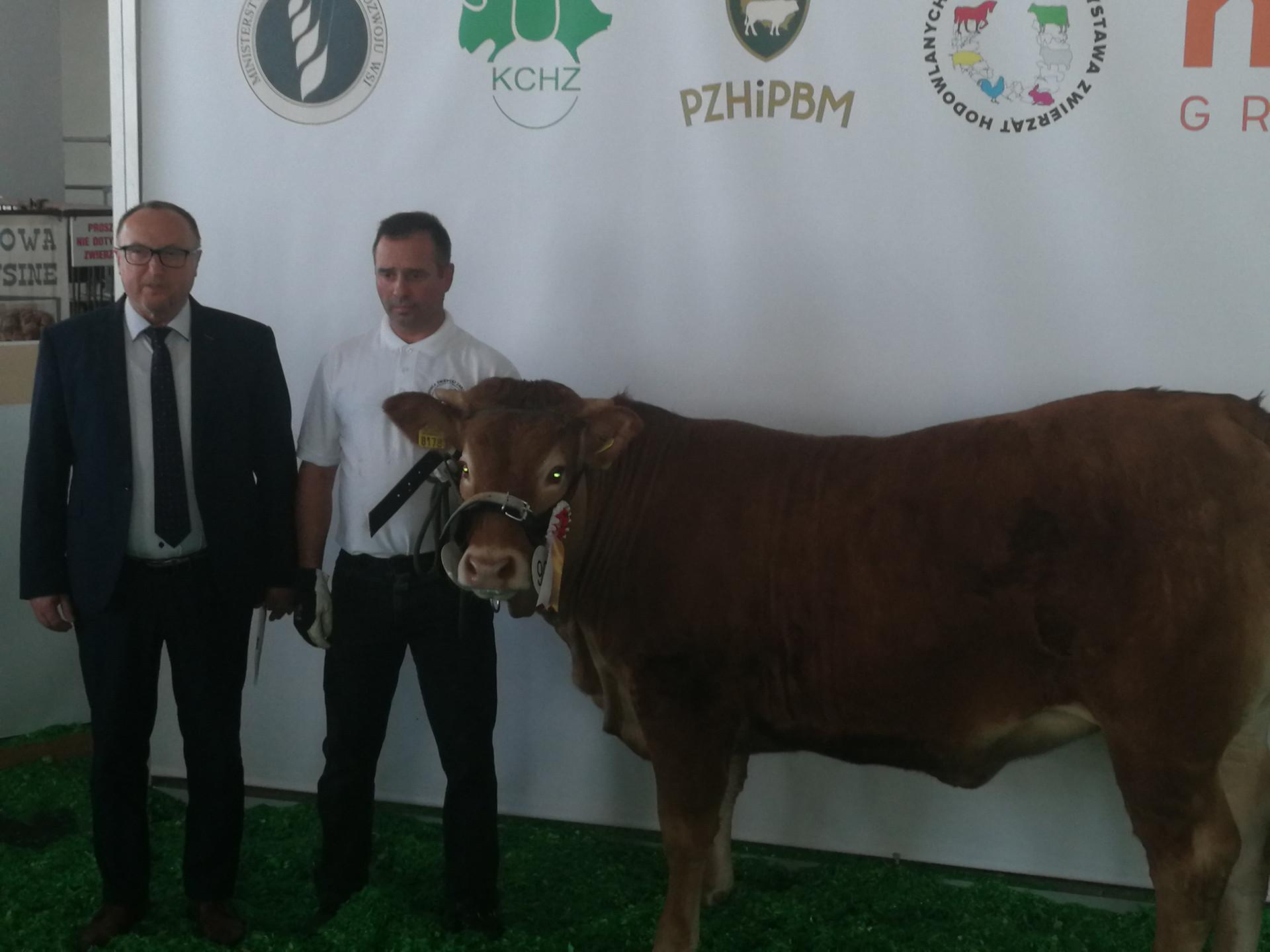 Narodowa Wystawa Zwierząt Hodowlanych w Poznaniu