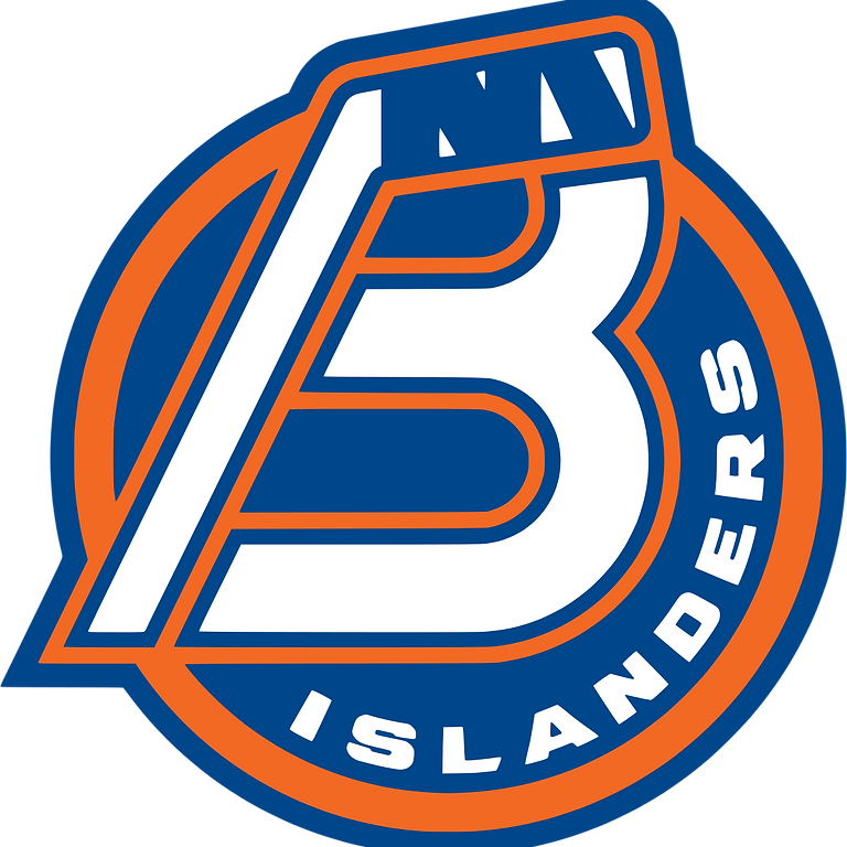 Young Professionals Night at Bridgeport Islanders Hockey