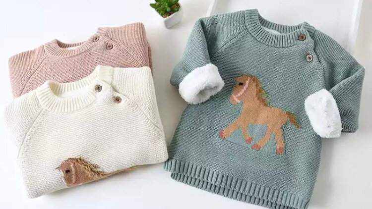 Horse Embroidered jersey