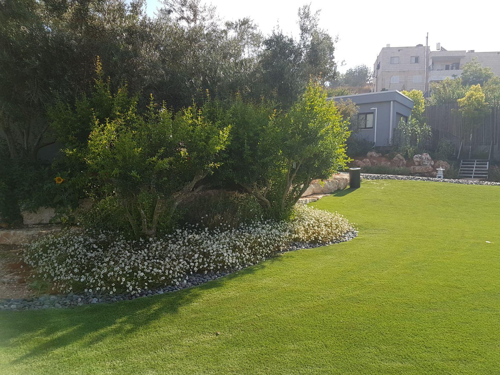 גינה ירושלמית