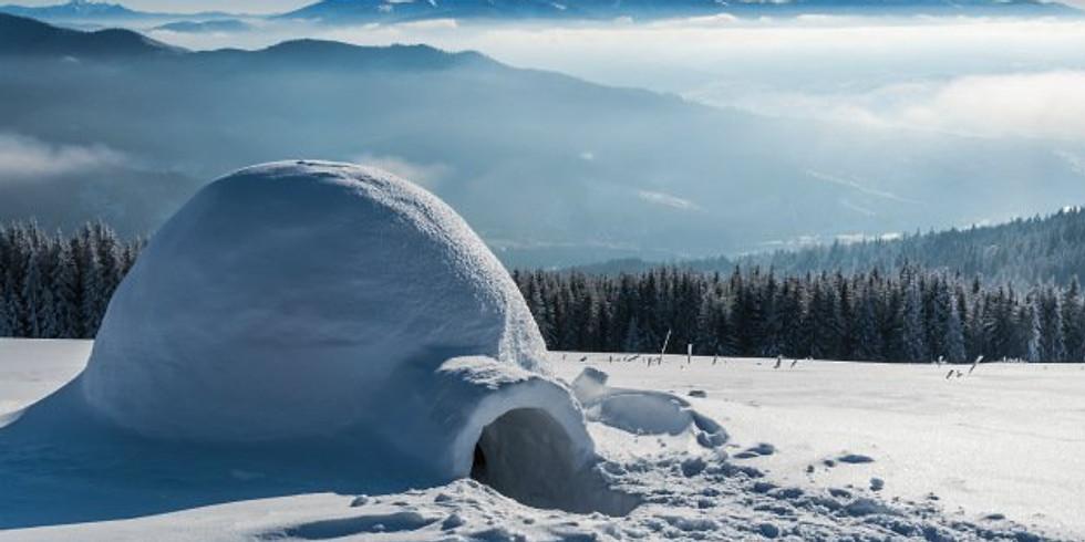 Winter Survival (Free!)