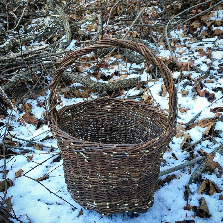 Invasive Bittersweet Baskets (full day)