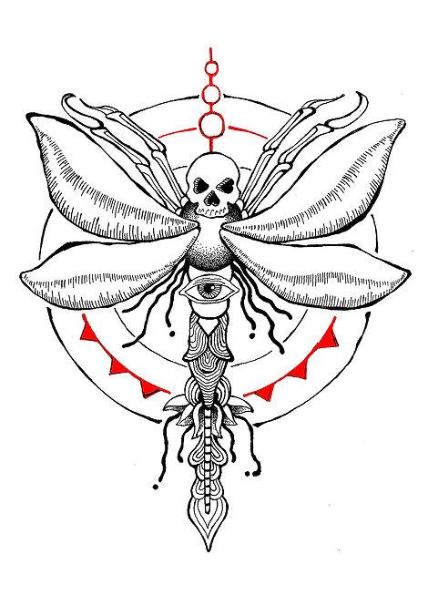 Ilustração Libélula Mesmérica