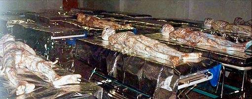 Alien bodies in morgue