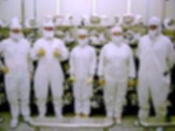 Lab suits