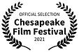 ChesapeakeFilmFestival.png