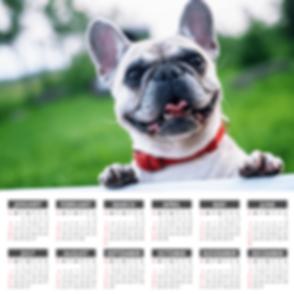 Widescreen-2019-yearly-calendar-in-HD.pn