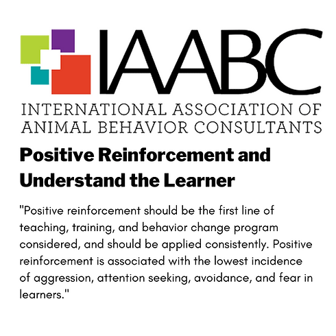 Positive Reinforcement and Understanding the Learner Positive reinforcement should be the