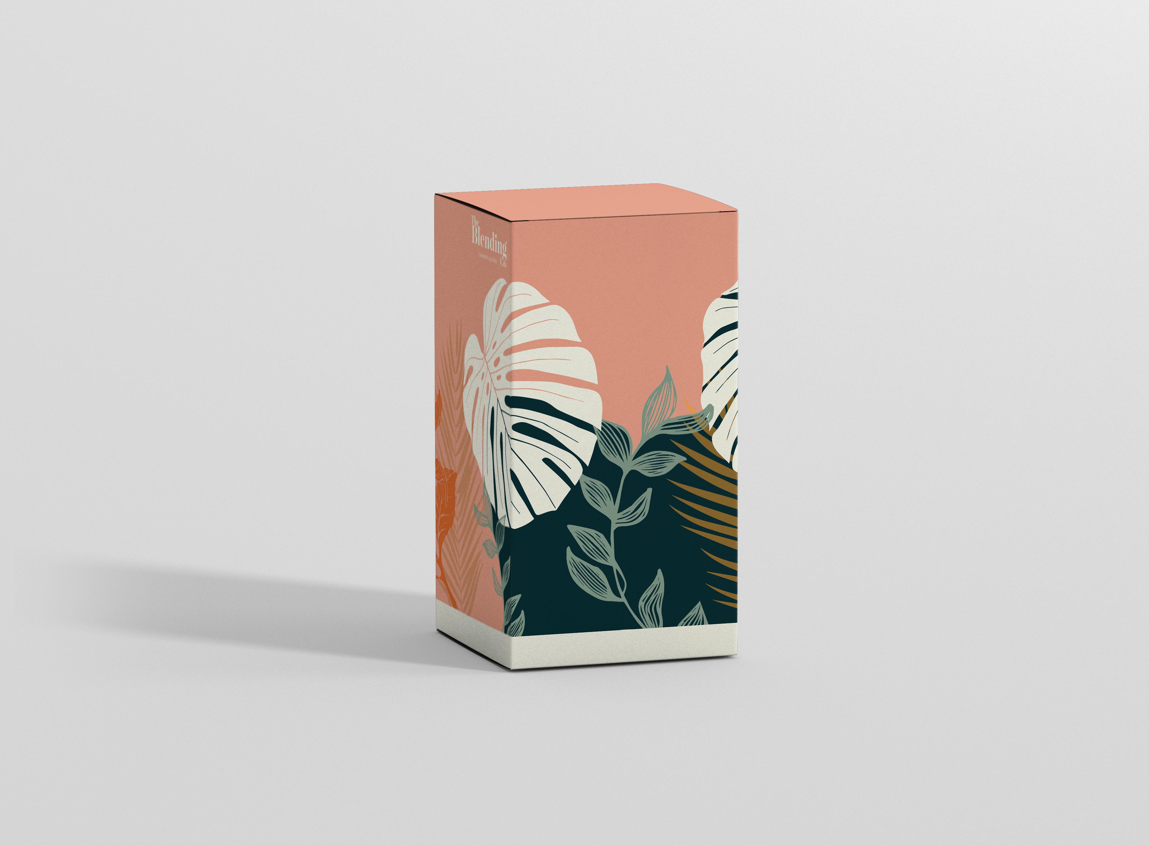 mockup box 3