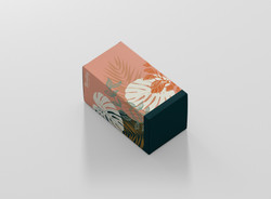 mockup box 2