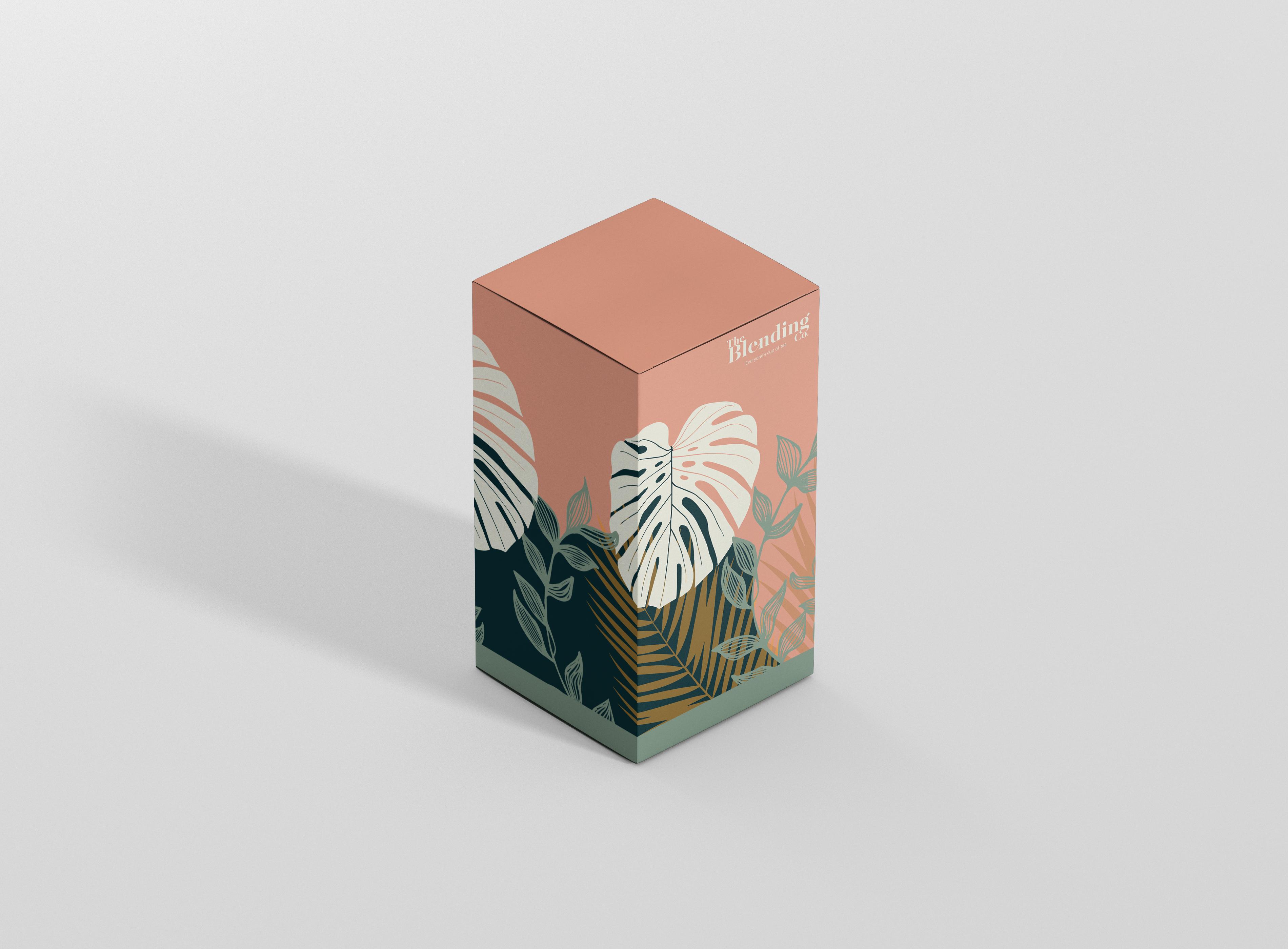 mockup box 1