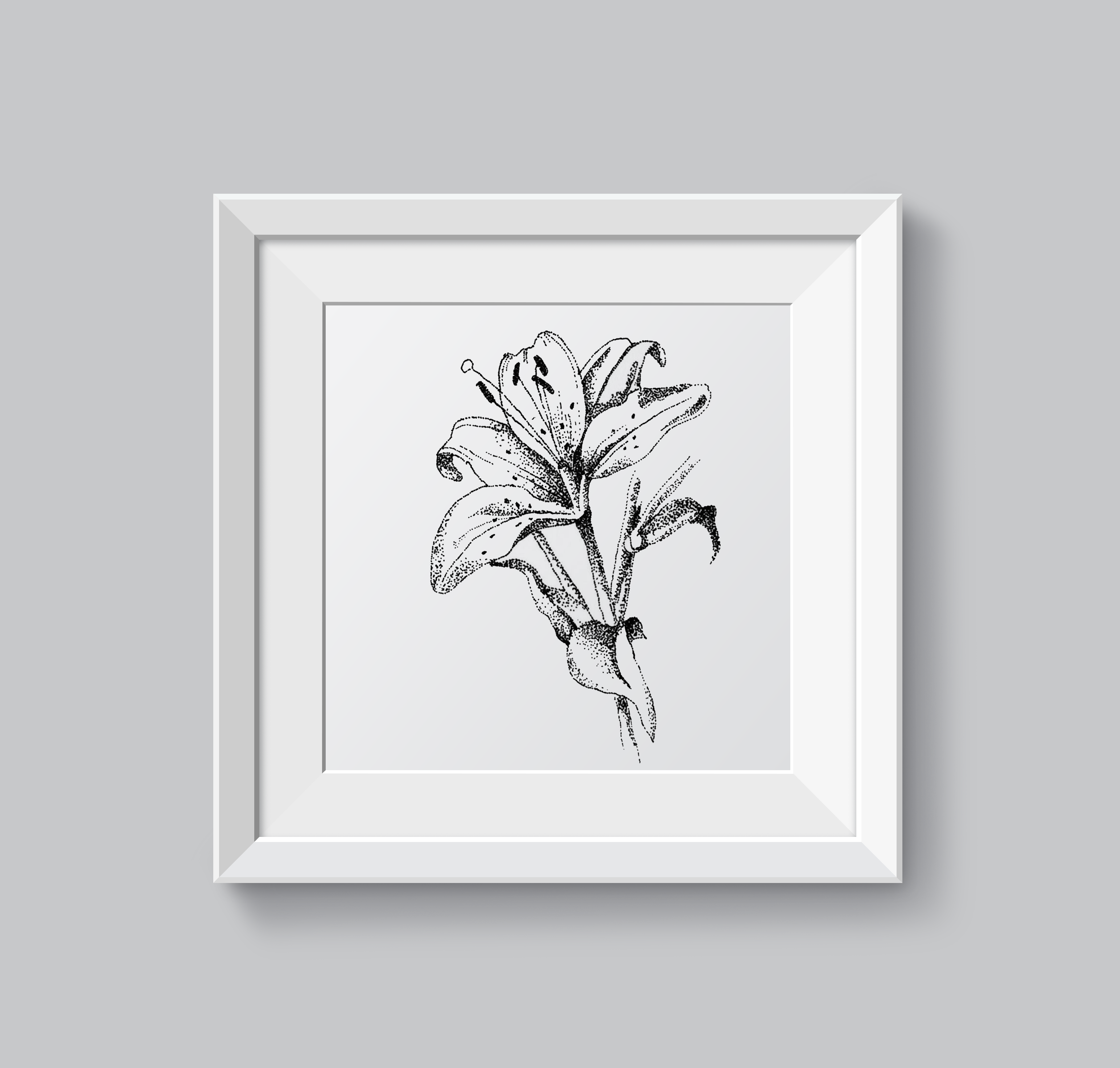 mockup lily