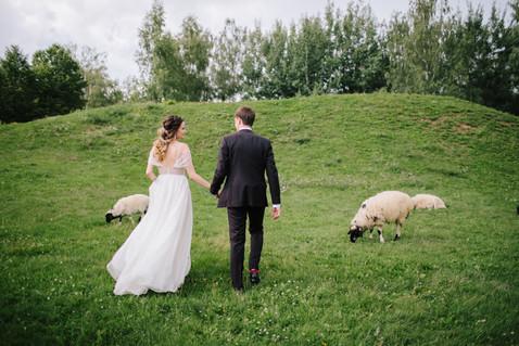 д Wedding_web-288.jpg