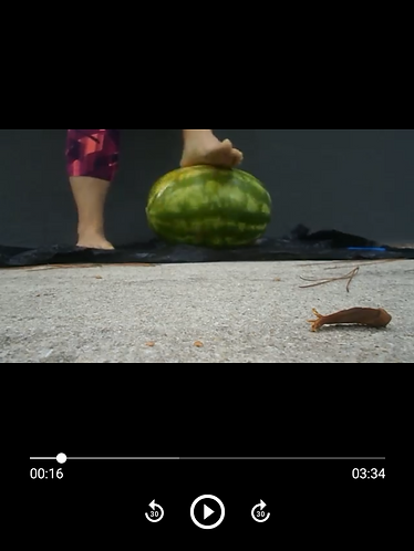 Watermelon Crush