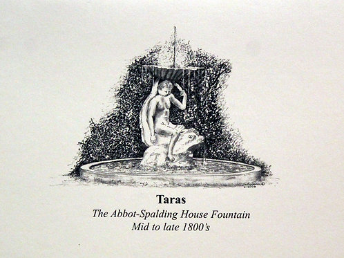 Note card:  Taras Fountain (set of 6)