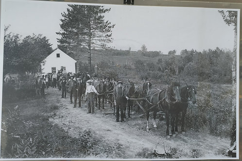 Placemat:  Horses Moving House
