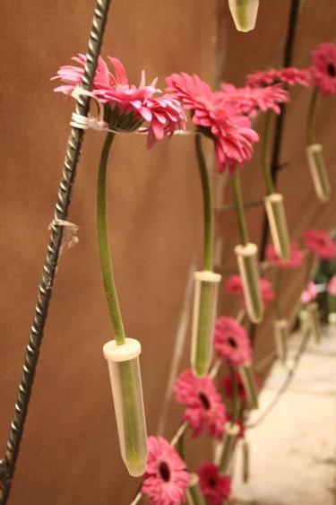 15_rurarc_temps_de_flors_arquitectura_ef