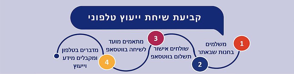 שיחת ייעוץ טלפוני אתר חדש עמוד בית ו-SEO