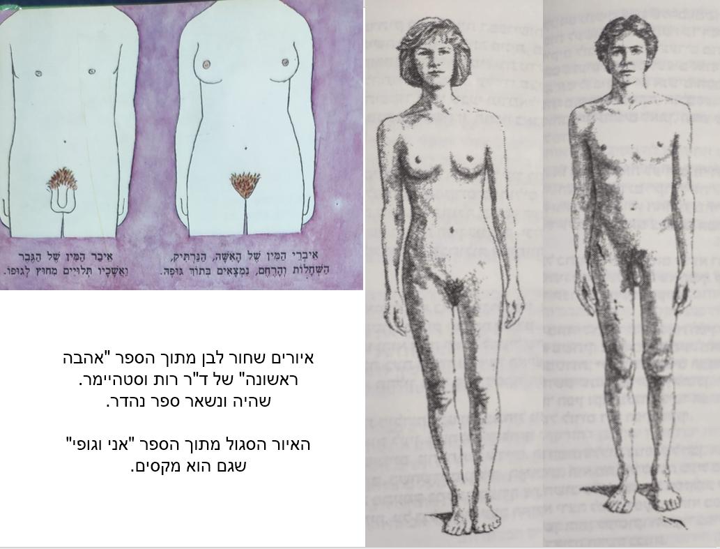 עירום מספרי חינוך מיני ישנים