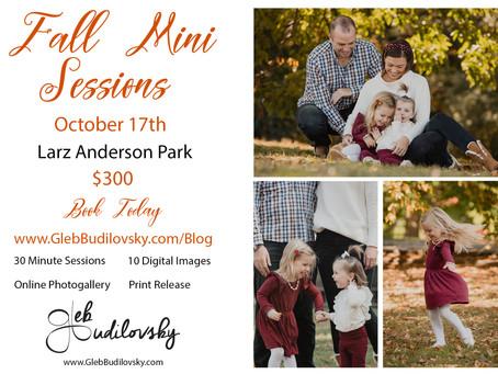 Family Mini Shoots in Brookline & Sudbury, Massachusetts
