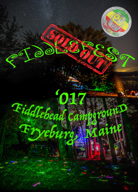 Fiddlefest Review - Our Own Mini Music Festival
