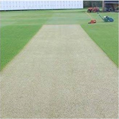 Eco Cricket Square Grass Seed - 20kg