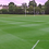 Thumbnail: Premium Football & Rugby Grass Seed