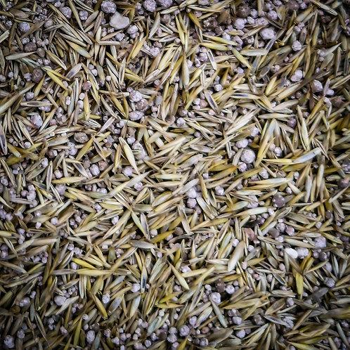 Emergency Patch Kit - Lawn Grass Seed & Fertiliser Mix