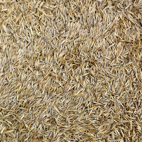 Organic Lawn Grass Seed Mix (70% Organic)