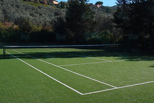 Tennis All Rye Grass Seed