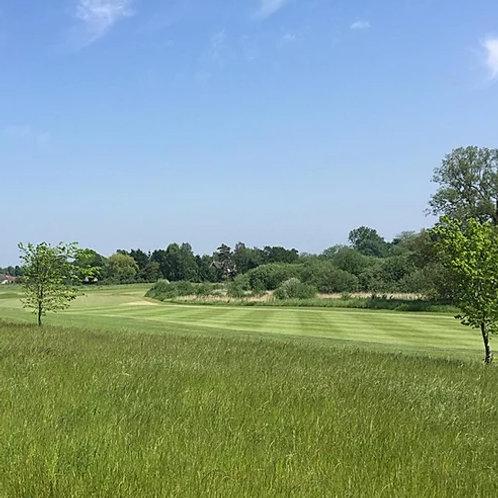 Golf Rough Grass Seed