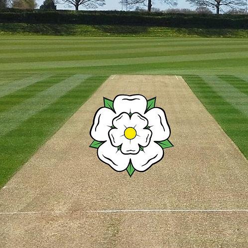 Premium Yorkshire Cricket Square Grass Seed - 20kg