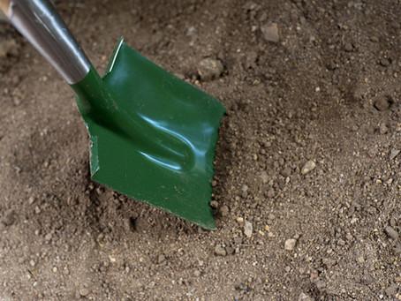 Seeding a New Lawn