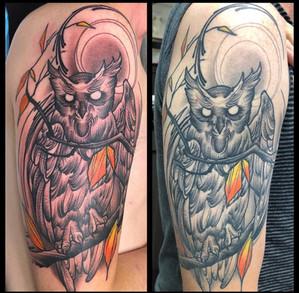 Owl - Fresh vs Healed