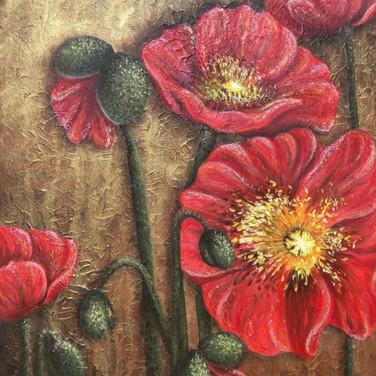 Arctic Poppies