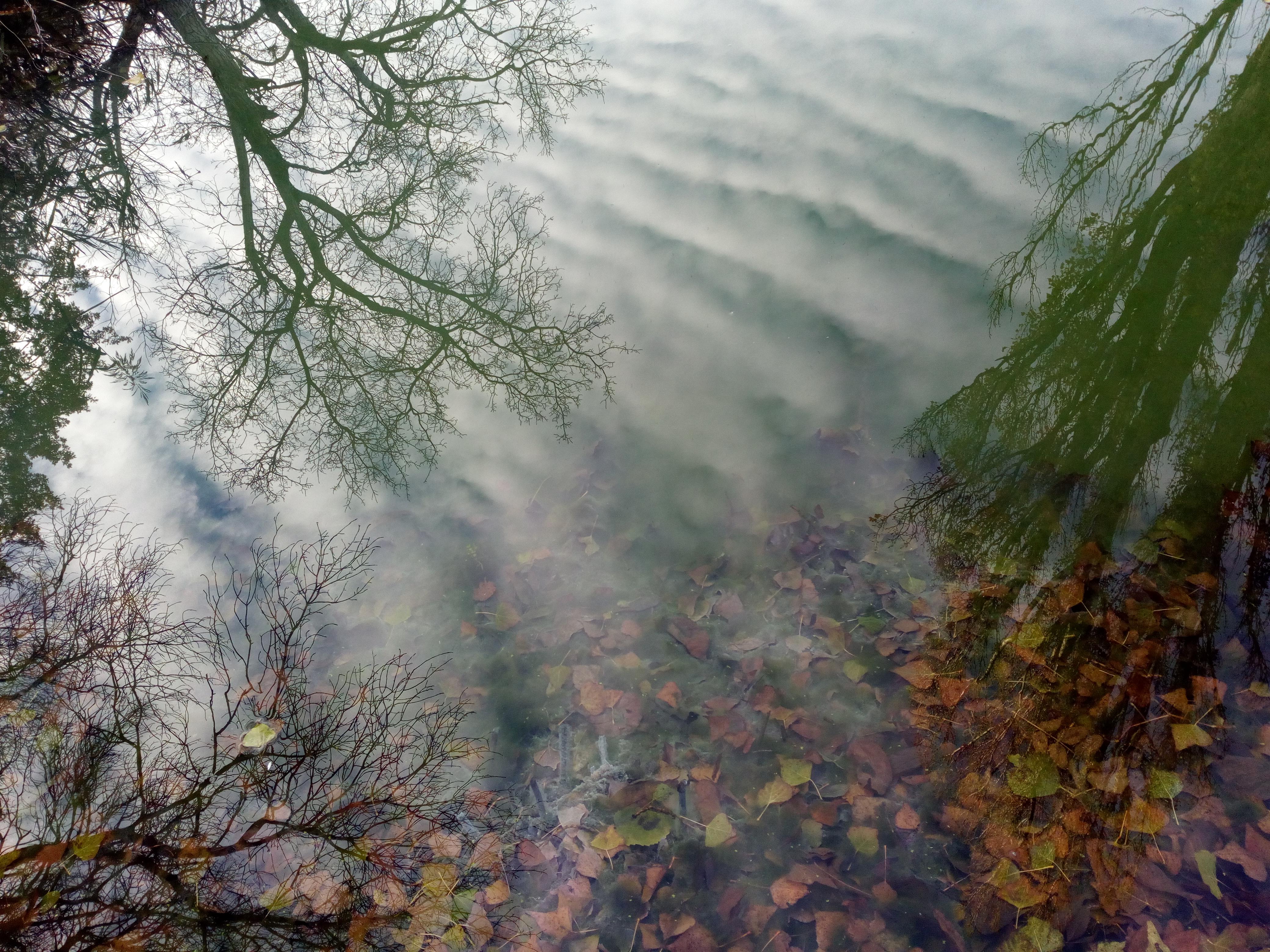 пруд с минеральной водой
