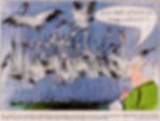 OGA_Kranichkarikatur_1.11.18.jpg