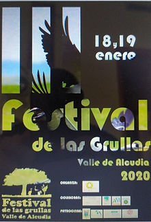 festival_5.jpg