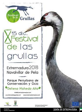 Festival de las Grullas.jpg